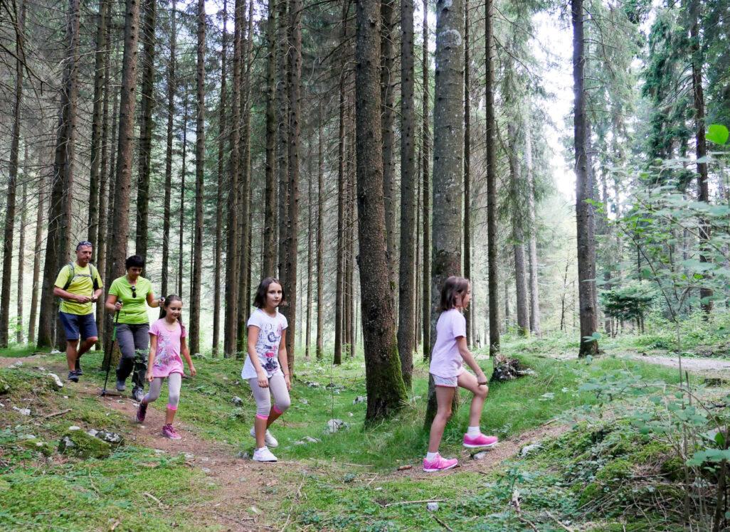 cef60ce3fc La Val di Ledro è una meta per tutta la famiglia, le montagne e i prati che  fanno da cornice al lago offrono numerosi spunti per semplici passeggiate e  ...